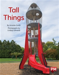 Tall Things - 9780170387347