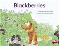 Blackberries - 9780170388689