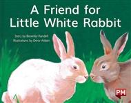 A Friend for Little White Rabbit - 9780170388757