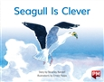 Seagull is Clever