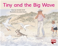 Tiny and the Big Wave - 9780170388825