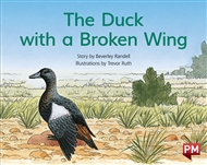 The Duck with the Broken Wing - 9780170394734