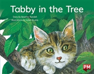 Tabby in the Tree - 9780170394888