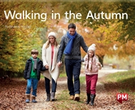 Walking in the Autumn - 9780170403498
