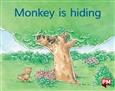 Monkey is hiding
